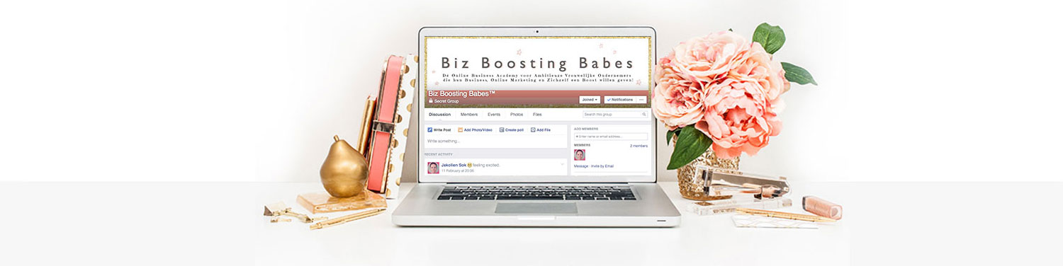 Biz Boosting Babes™ Facebook Group