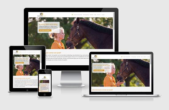 Web Design Eleonore EQuus